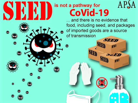 https://www.futurefoodsystems.com.au/wp-content/uploads/2020/06/Seeds-and-COVID-19-poster-cropped_Credit-APSA.jpg