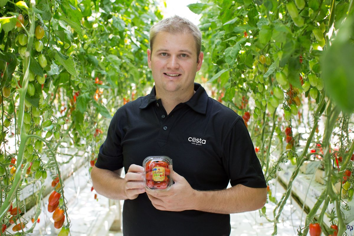 https://www.futurefoodsystems.com.au/wp-content/uploads/2020/08/Blush-Tomato_Paul-Butterworth_7-1200x800.jpg