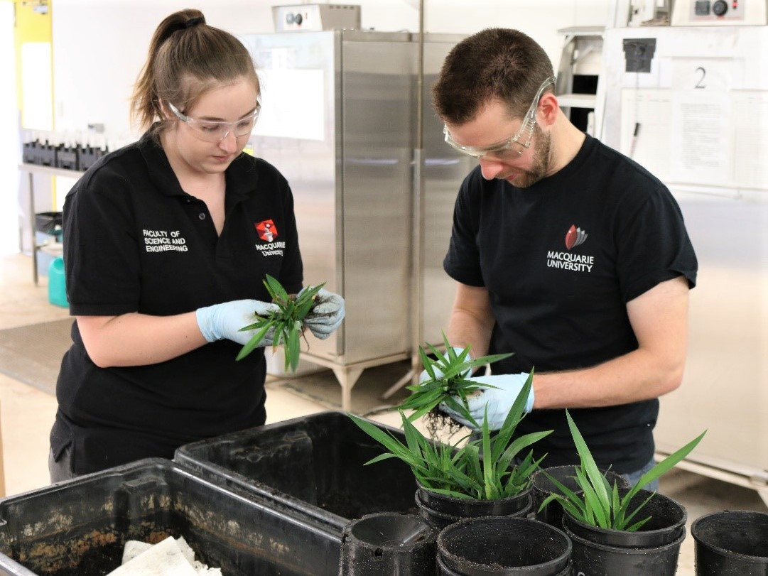 https://www.futurefoodsystems.com.au/wp-content/uploads/2020/08/In-the-lab_STEM-entrepreneurs-apply-now-for-the-federal-Department-of-Ags-annual-Science-and-Innovation-Awards-for-Young-People_Credit-Hort-Innovation.jpg