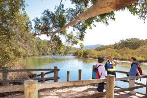 Coffs Creek, one of numerous waterways in the Coffs region. Credit: Coffs Harbour City Council