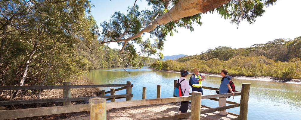 Coffs Creek, one of numerous waterways in the Coffs region. Credit: Coffs Harbour City Council