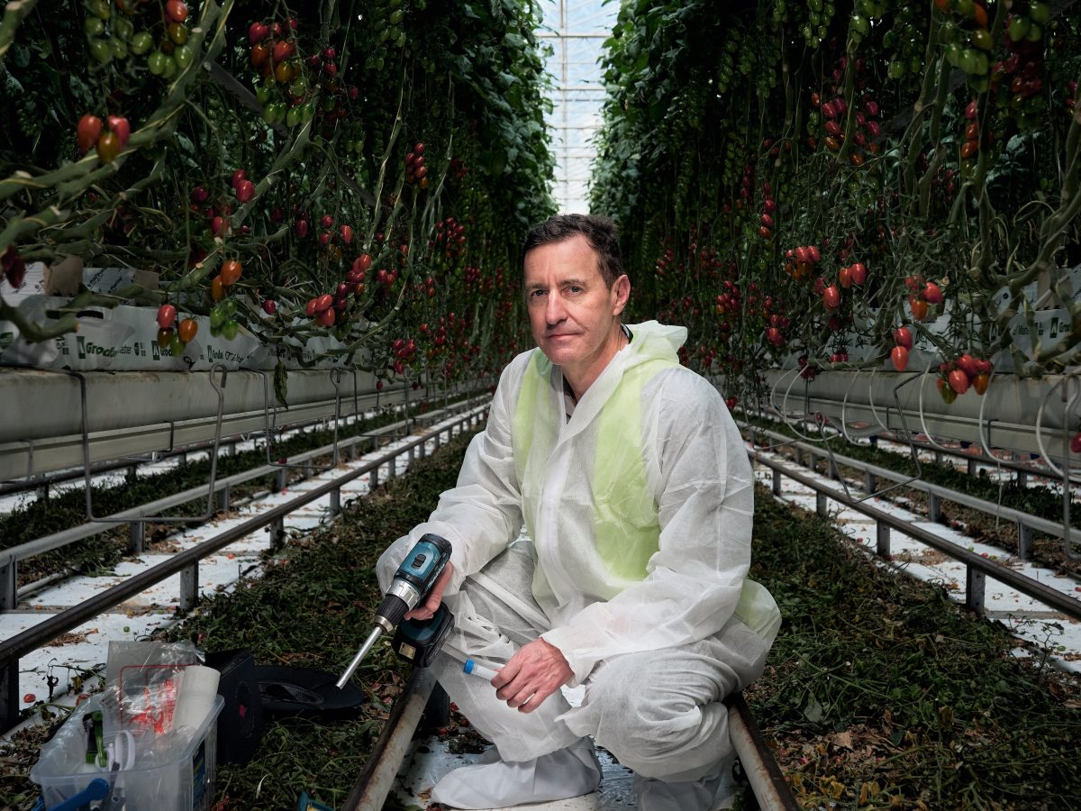 https://www.futurefoodsystems.com.au/wp-content/uploads/2020/10/PhD-Phil-Thomas-IT-professional-turned-microbiologist-will-undertake-his-PhD-as-part-of-an-industry-research-collaboration-between-Costa-Group-and-UNE-under-the-CRC_Credit-UNE_CROP-1200x900.jpg