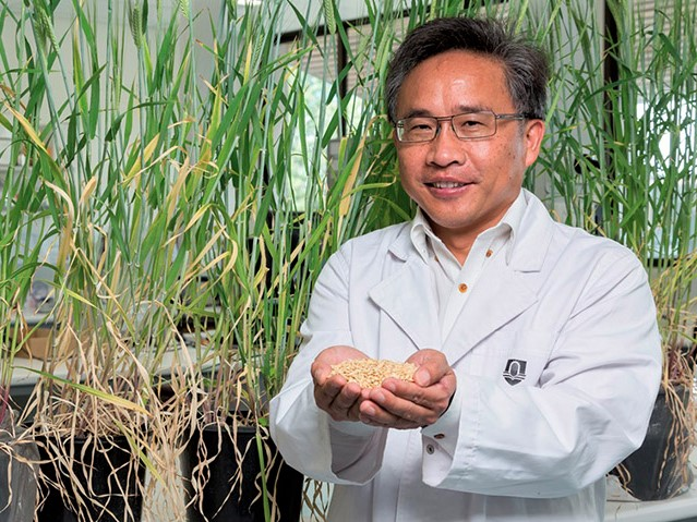 https://www.futurefoodsystems.com.au/wp-content/uploads/2020/11/Murdoch-University's-Professor-Chengdoa-Li-and-team-will-conduct-crop-trials-in-the-new-greenhouse-to-evaluate-its-effectiveness-in-plant-growth_Credit-Murdoch-University.jpg