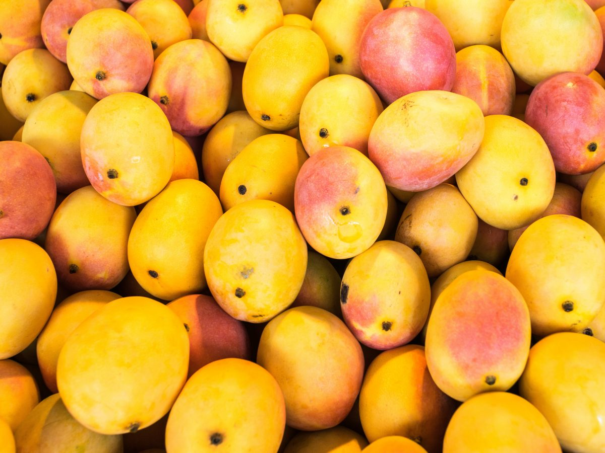 https://www.futurefoodsystems.com.au/wp-content/uploads/2021/02/Typically-mangoes-spend-three-days-in-a-special-ripening-chamber-at-a-set-temperature-prior-to-being-transported-to-market.-Credit-Shutterstock-1200x900.jpg