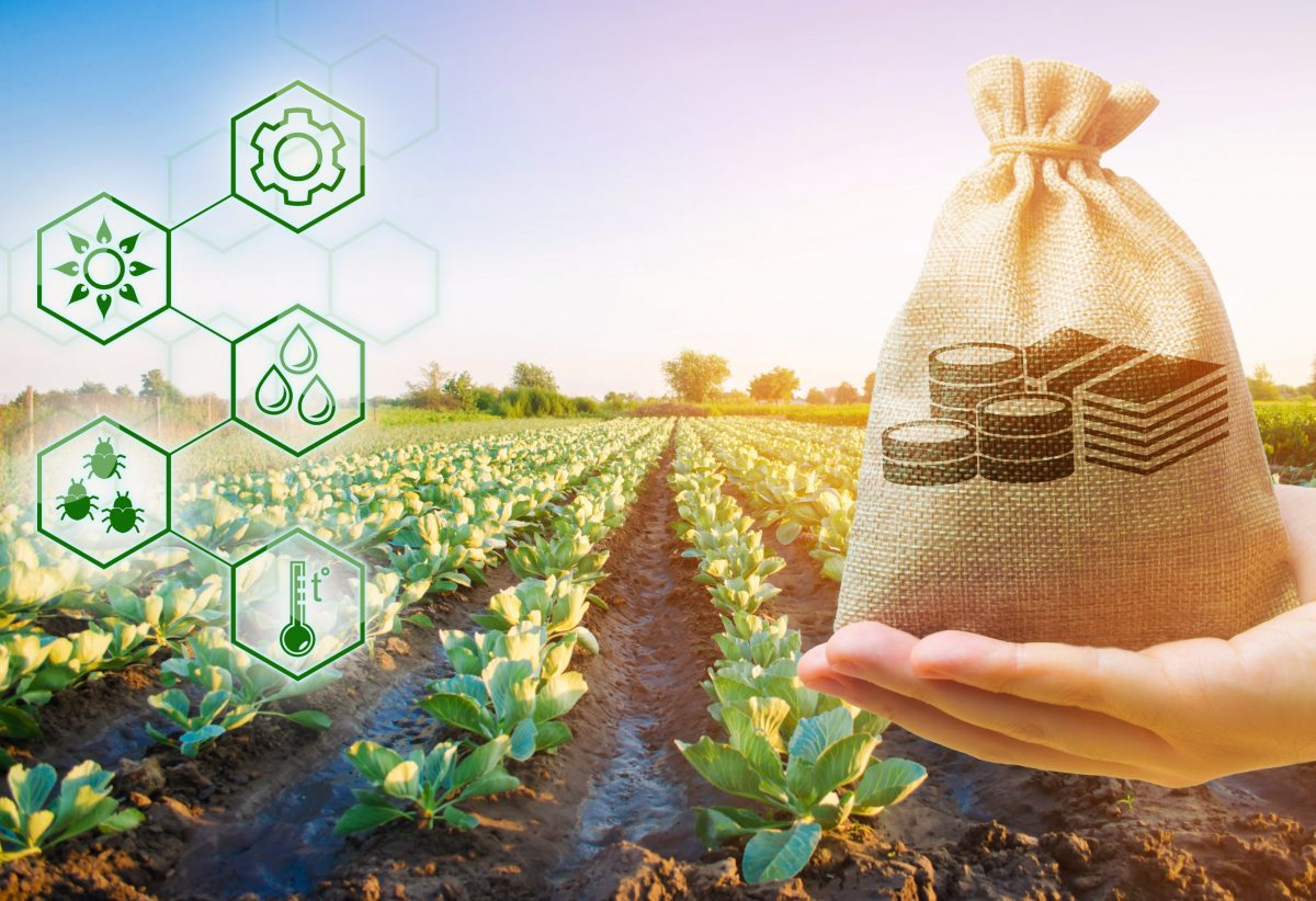 https://www.futurefoodsystems.com.au/wp-content/uploads/2021/03/Funding-is-available-from-federal-state-and-territory-governments-for-food-beverage-and-agricultural-enterprises-big-and-small.-Credit-Andrii-Yalanskyim-Shutterstock_1626914650_CROP-1200x822.jpg