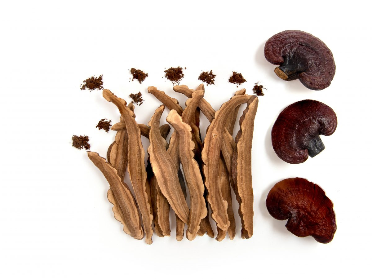https://www.futurefoodsystems.com.au/wp-content/uploads/2021/04/Reishi-mushroom-slices-and-powder.-Credit-Wasanajai-Shutterstock_1847969605_CROP-1200x900.jpg