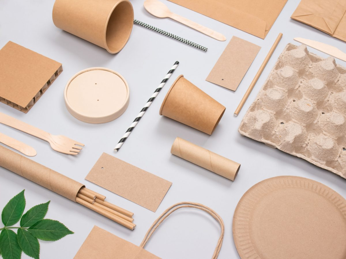 https://www.futurefoodsystems.com.au/wp-content/uploads/2021/04/Sustainable-and-biodegradable-street-food-packaging-made-from-cardboard.-Credit-Iryna-Mylinska-Shutterstock_1890497593_CROP-1200x900.jpg