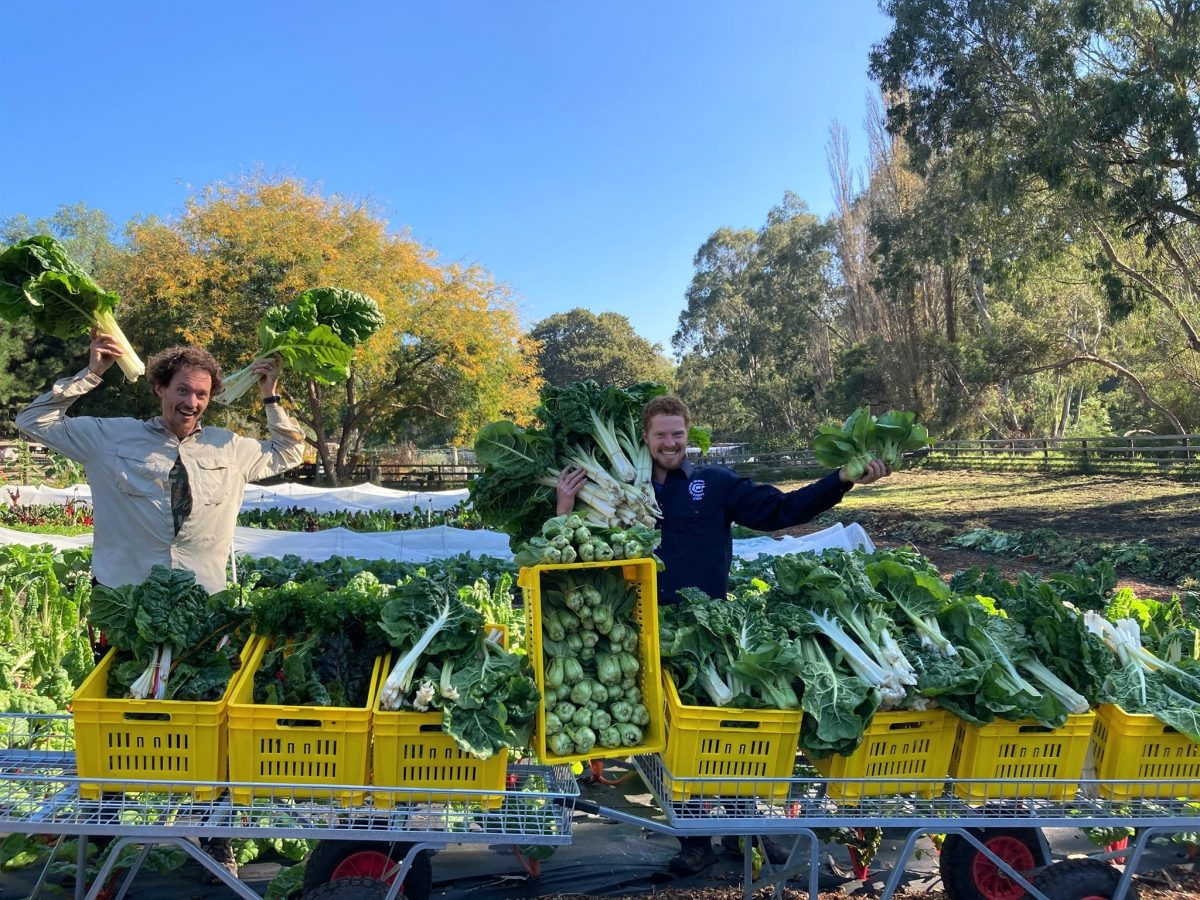 https://www.futurefoodsystems.com.au/wp-content/uploads/2021/05/Simeon-Ash-and-Sam-Shacklock-with-a-haul-from-the-CCF-market-garden.-Credit-Collingwood-Childrens-Farm_20100507-Sim-and-Sam-1200x900.jpg