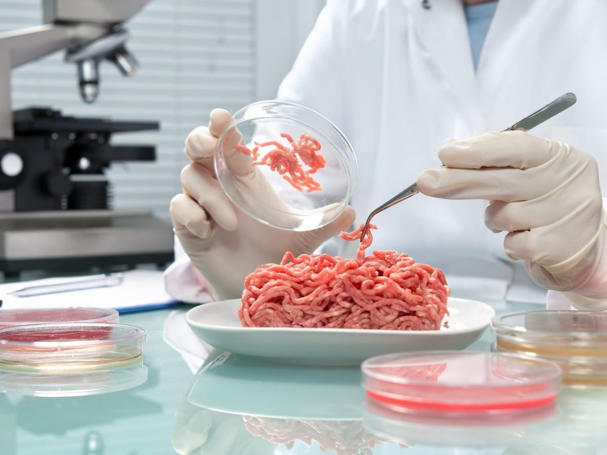 https://www.futurefoodsystems.com.au/wp-content/uploads/2021/08/Testing-cell-cultured-meat-in-the-lab.-Credit-Shutterstock_250375186_CROP-scaled-1200x900.jpg